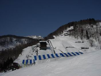20060313_022